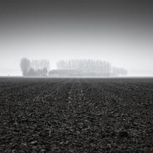 Zeeuwse Klei, Zeeuws-Vlaanderen, Netherlands, 2018