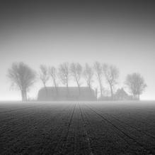 Farm in Dense Fog, Zeeuws-Vlaanderen, Netherlands