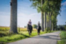 Polderrit, Zeeland, foto Angela Worst.JPG