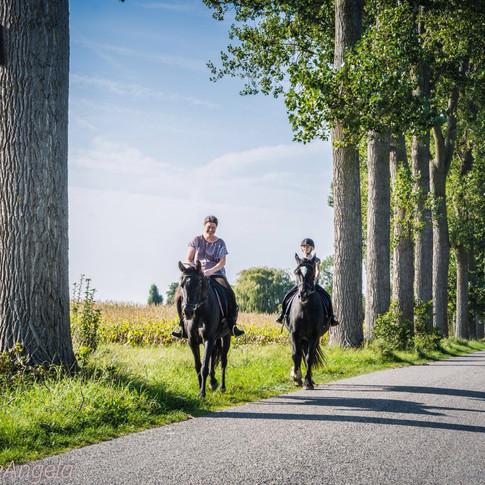 Paardrijden in Zeeland, polderrit