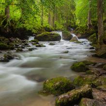 Stream, Cascade d'Ardent, Chablais Geopark, France, 2013