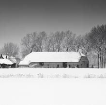 Old Shed, Zeeuws-Vlaanderen, Netherlands, 2019