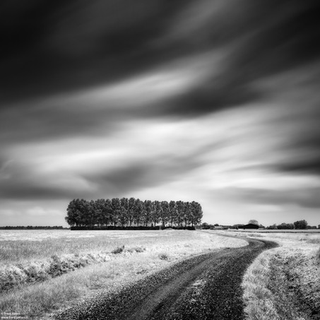 Dirt Road, Zeeuws-Vlaanderen, Netherlands, 2020