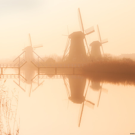 Morning Mist, Kinderdijk, Zuid-Holland, The Netherlands