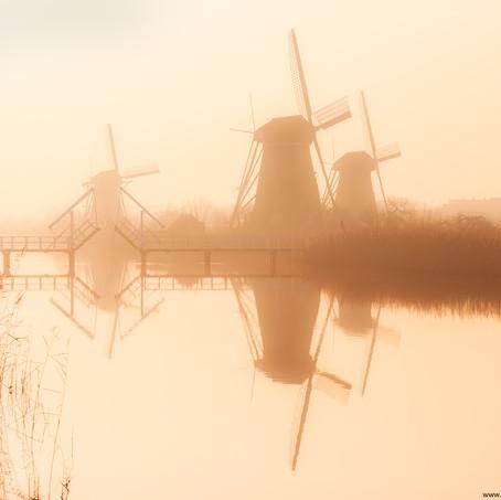 Morning Mist, Kinderdijk, Zuid-Holland, The Netherlands