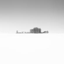 Snow, Zeeuws-Vlaanderen, Netherlands, 2019