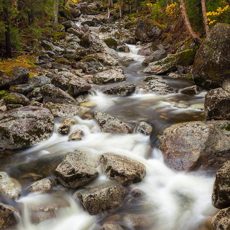 Mountain Stream, Indian Summer, Adirondacks, USA