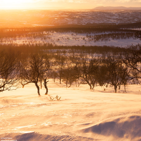 Sunset, Holy Mountain Ailigas, Karigasniemi, Finland