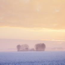 Winter Morning, Zeeuws-Vlaanderen, Netherlands