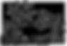 Logo, B&B Het Zoete Peerd, Zeeuws-Vlaand
