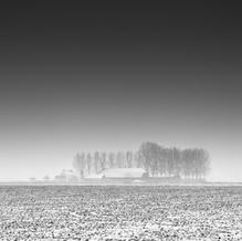 Blizzard, Zeeuws-Vlaanderen, Netherlands, 2021