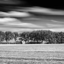 Farm with Trees, Zeeuws-Vlaanderen, Netherlands, 2020