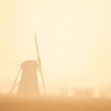 Mist, Kinderdijk, Zuid-Holland, The Netherlands