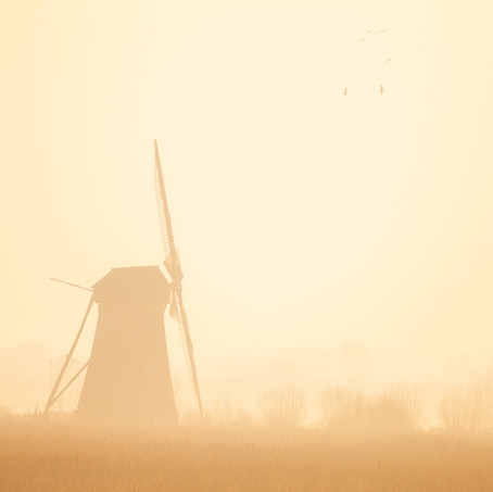 Mist, Kinderdijk, Zuid-Holland, The Netherlands