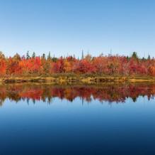 Autumn Colors, Round Lake, Adirondacks, USA