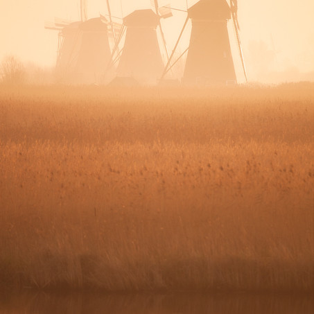 Dreams, Kinderdijk, Zuid-Holland, The Netherlands