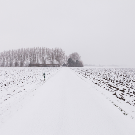 Farm in the Snow, Zeeuws-Vlaanderen, The Netherlands
