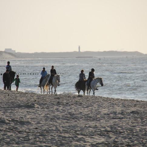 Paardrijden aan het strand.JPG
