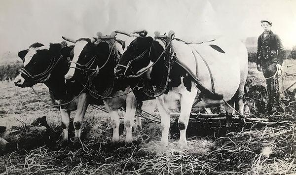 Jacobus Houdersteijn aan het ploegen, Oudste foto d'Eierkurf