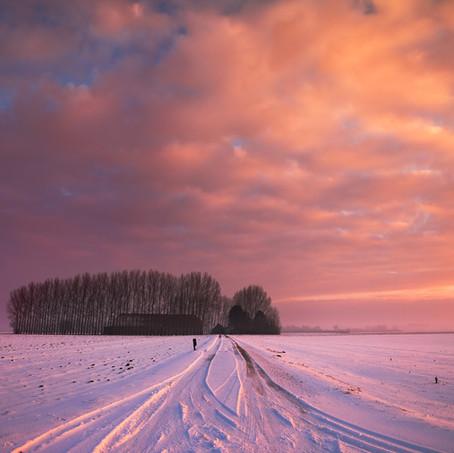 The Shed, Zeeuws-Vlaanderen, Netherlands