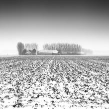 Zeeuwse Klei II, Zeeuws-Vlaanderen, Netherlands, 2019