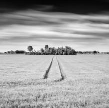 Track, Zeeuws-Vlaanderen, Netherlands, 2020