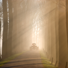 Tractor in the Mist, Zeedijk, Dordrecht, The Netherlands, 2009