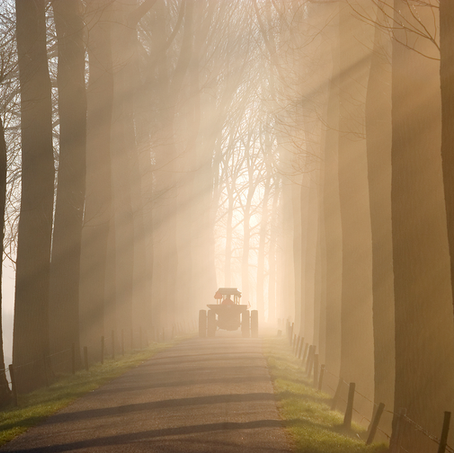 Tractor in the Mist, Zeedijk, Dordrecht, The Netherlands, 2009