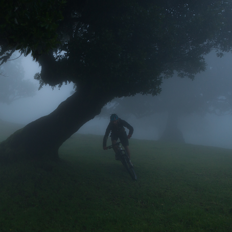 Through the Mist, Mountainbiken, Madeira, Portugal, 2016