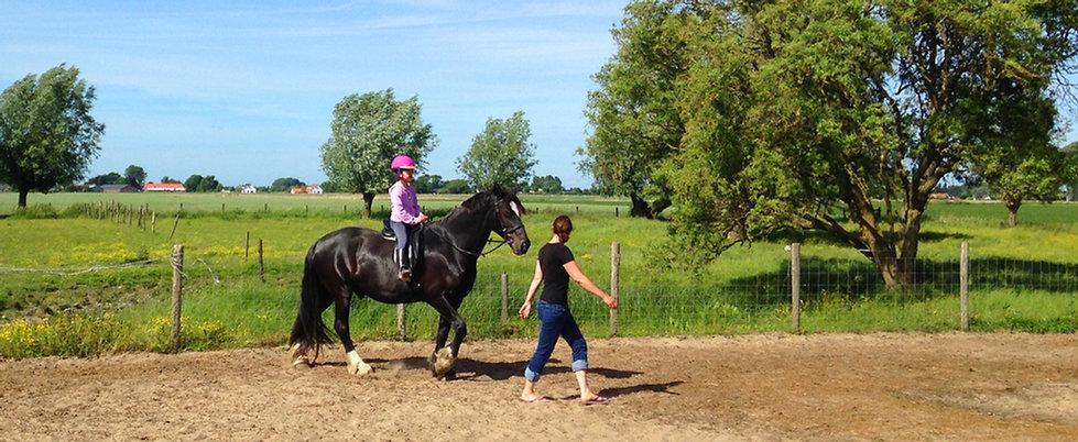 Paarden leasen, Paadrijden in Zeeland
