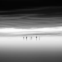 Floating Poles, Oesterdam, Zeeland, Netherlands