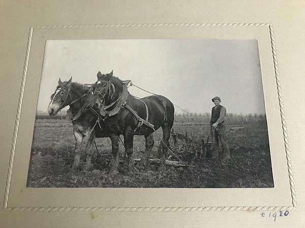 Ploegen met paarden 1920 d'Eierkurf.jpg