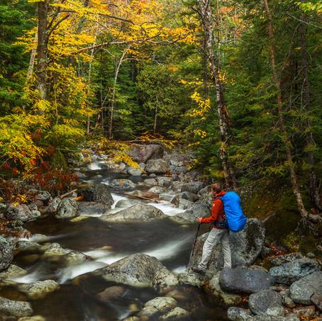 Mountain Stream, Indian Summer, Adirondacks, United States