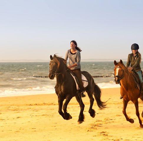 Paardrijden Zeeland, Strandrit Zeeuws Vlaanderen