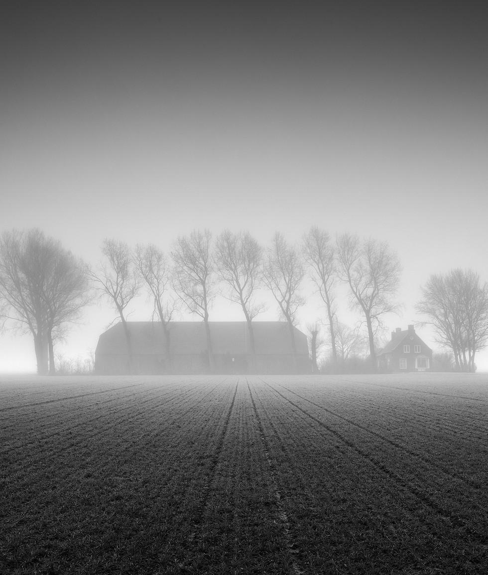 Farm in Dense Fog, Zeeuws-Vlaanderen, Ne