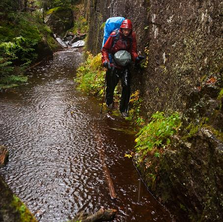 Wetness, High Peaks, Adirondacks, USA