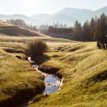 Morning Mist, Steinberg am Rofan, Tyrol, Austria