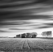 Farm, Zeeuws-Vlaanderen, Netherlands, 2021
