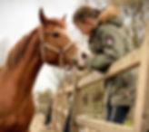 Ellie, paarden leasen, stal Het Zoete Peerd