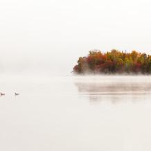 Goosebumps, Lake Harris, Adirondacks, USA