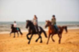 Paardrijden Zeeland, Strandrit Zeeuws Vl