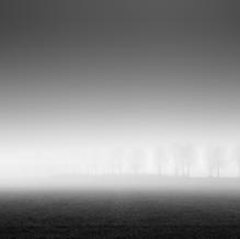 Dike in the Mist, Zeeuws-Vlaanderen, Netherlands, 2020