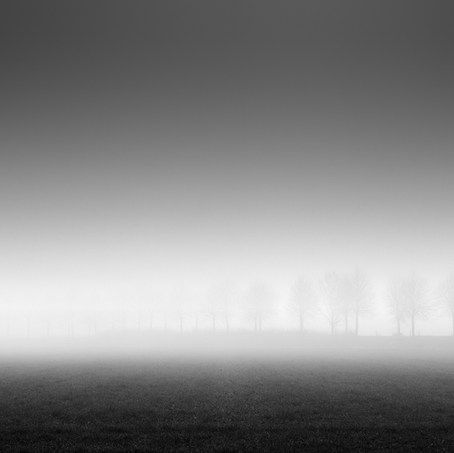 Dike in the Mist, Zeeuws-Vlaanderen, Netherlands, 2020