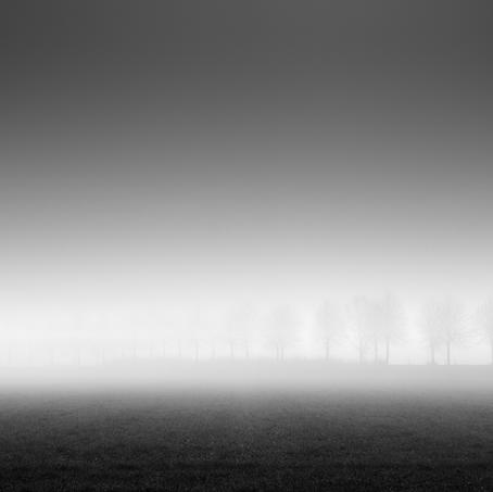 Dike in the Mist, Zeeuws-Vlaanderen, Netherlands