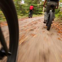 Speed, Newcomb, Adirondacks, USA