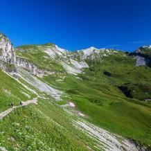 Malga Vette Grandi, Parco Nazionale delle Dolomiti Bellunesi, Dolomites, Italy