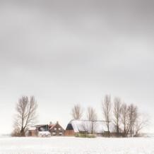 Farm in Winter, Zeeuws-Vlaanderen, Netherlands, 2021