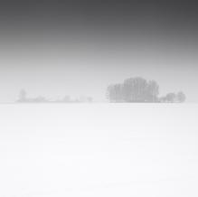 Mist, Zeeuws-Vlaanderen, Netherlands, 2019