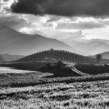 Tuscan Andalusia, Along the MA8405 to Setenil, Andalusia, Spain, 2016