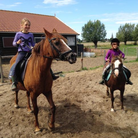 Paardrijden in de rijbak
